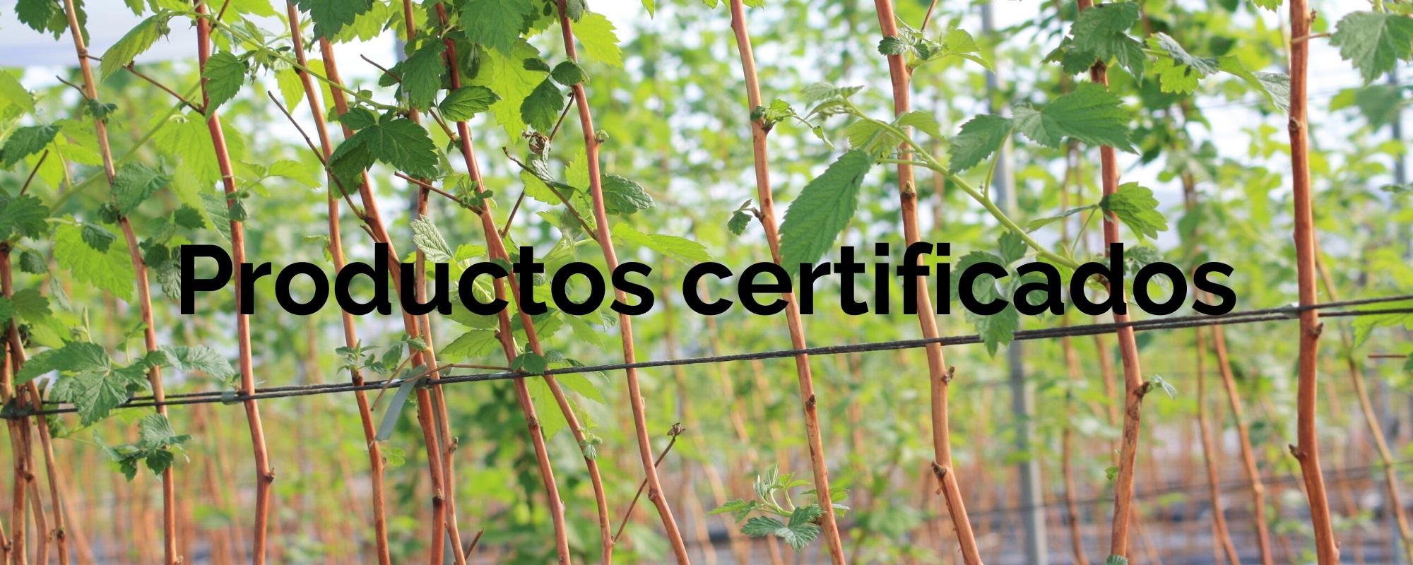 productos-certificados-agroecologica-el-origen-agricultura-ecologica-01