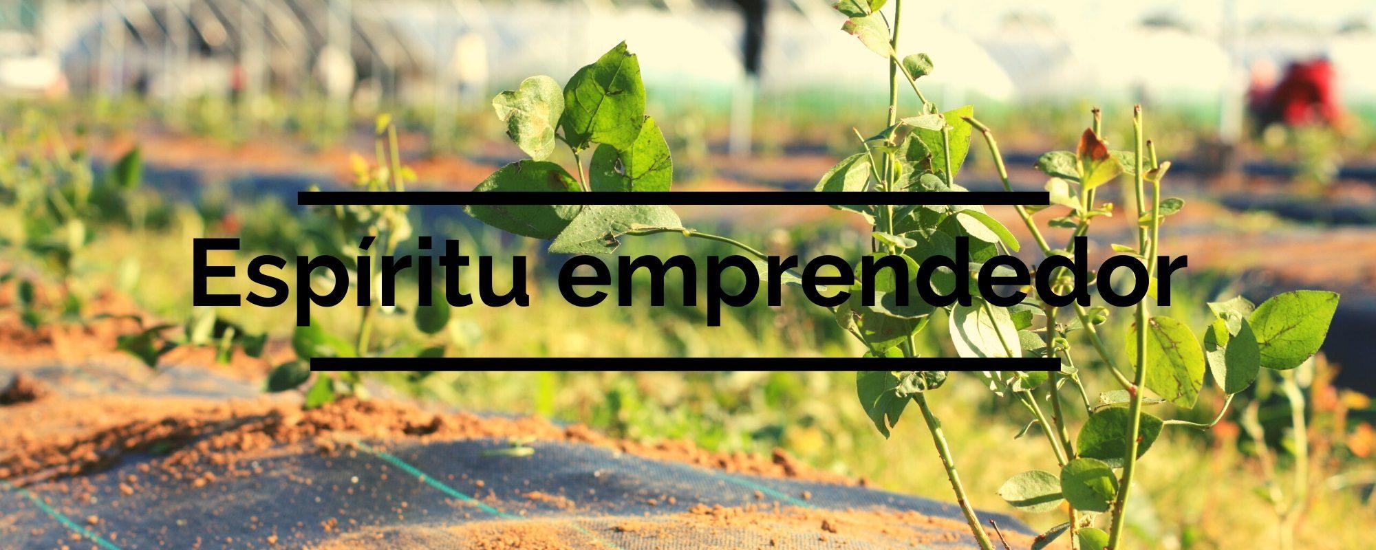 agroecologica-el-origen-espiritu-emprendedor-01
