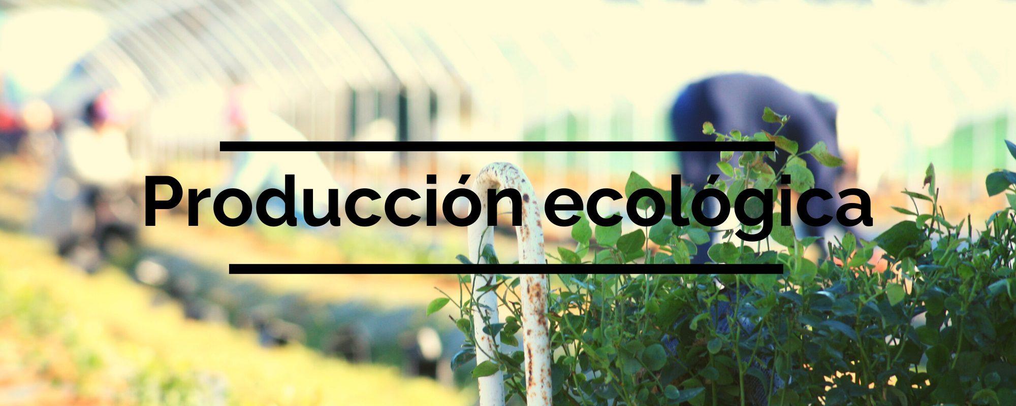 agroecologica-el-origen-produccion-ecologica-01
